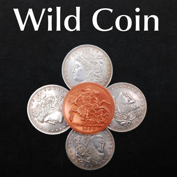 Sun and Moon Coin Set Münztrick